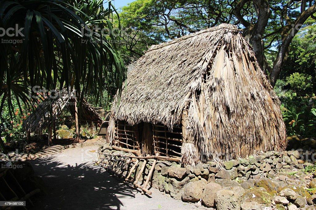 Ancient hawaiian homes (Polynesian houses) stock photo