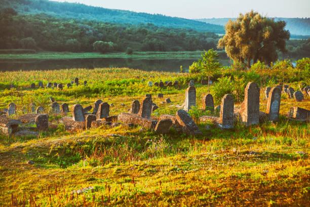 alten jüdischen friedhof - waldfriedhof stock-fotos und bilder