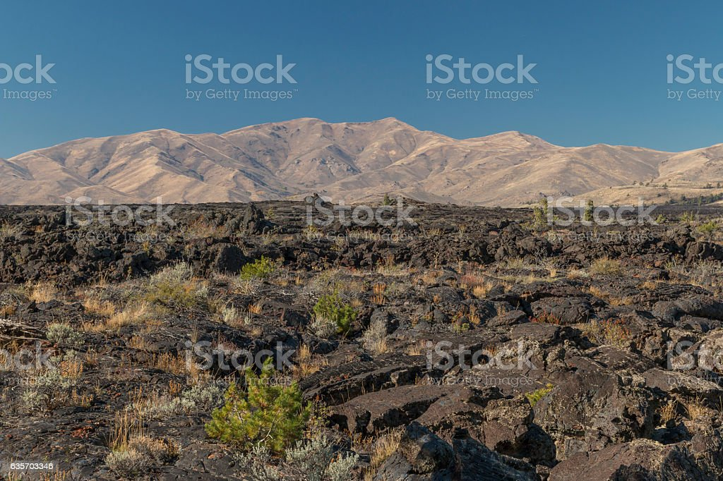Ancient lava flow in Craters of the Moon National Monument. royalty-free stock photo
