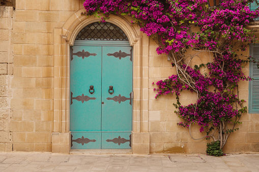 Ancient maltese house with pink bougainvillea in the wall