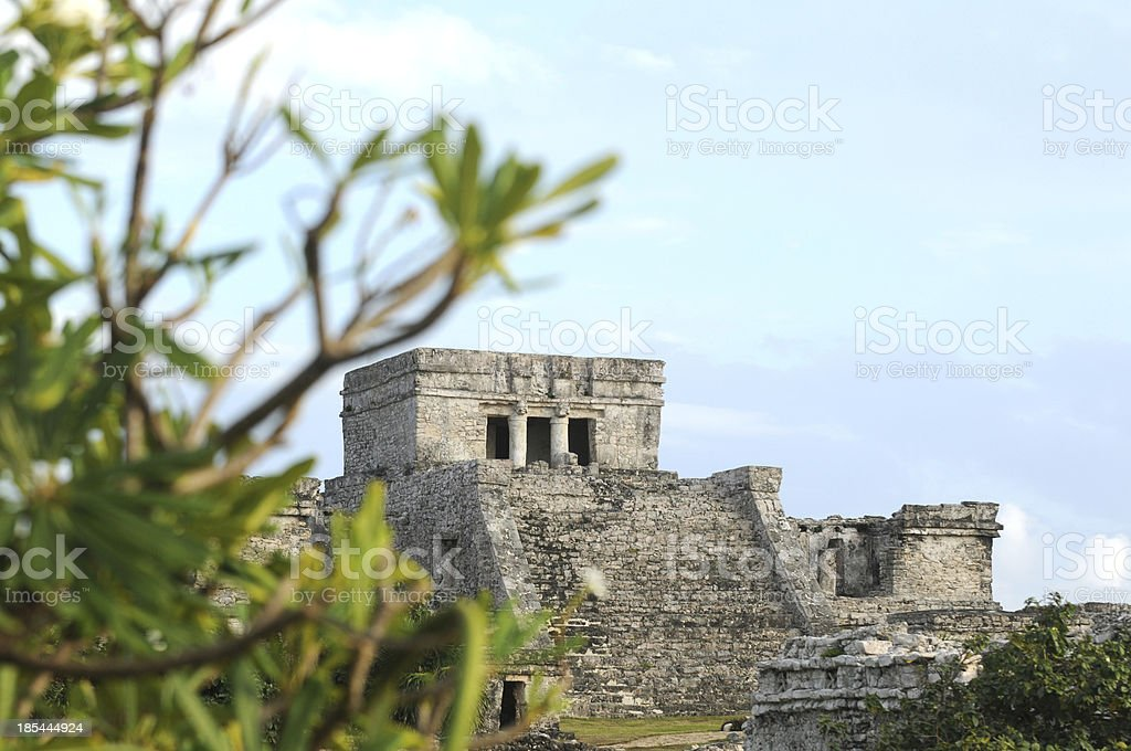 Ancient Mayan in Mexico royalty-free stock photo
