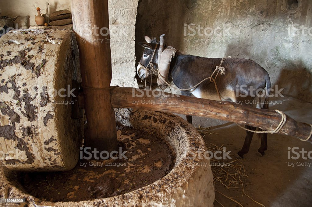 Ancient Olive Press royalty-free stock photo