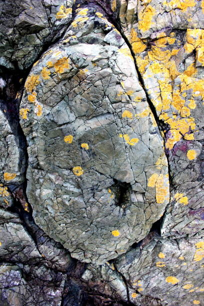 Alten Kissen Lava mit Flechten – Foto