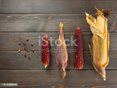 Ancient red corn from organic farming. Dry corn cob with husk. Red maize on rustic wooden table. Flat lay, top view.