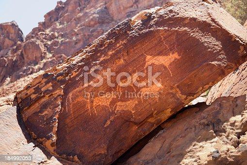 Ancient bushmen rock engravings (petroglyphs) at Twyfelfontain in Damaraland, Namibia