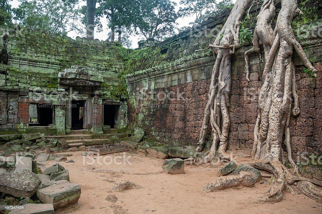 Ancient Ruins Of Ta Prohm Near Angkor Wat In Cambodia stock photo