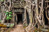 Travel Cambodia concept background - ancient ruins with door and tree roots, Ta Prohm temple, Angkor, Cambodia
