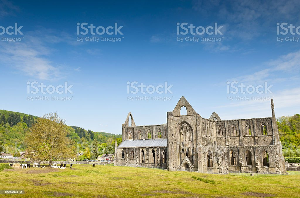 Ancient Ruins, Tintern Abbey stock photo