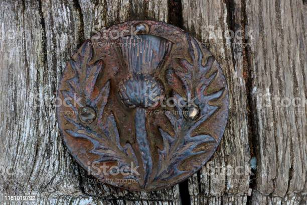 Photo of Ancient Scottish Thistle Emblem on an Old Wooden Post