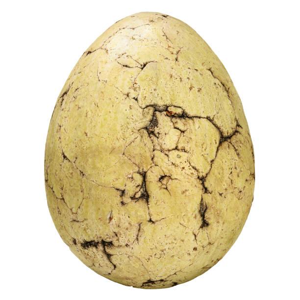Alte steinerne Ei mit Rissen isoliert auf weiss – Foto