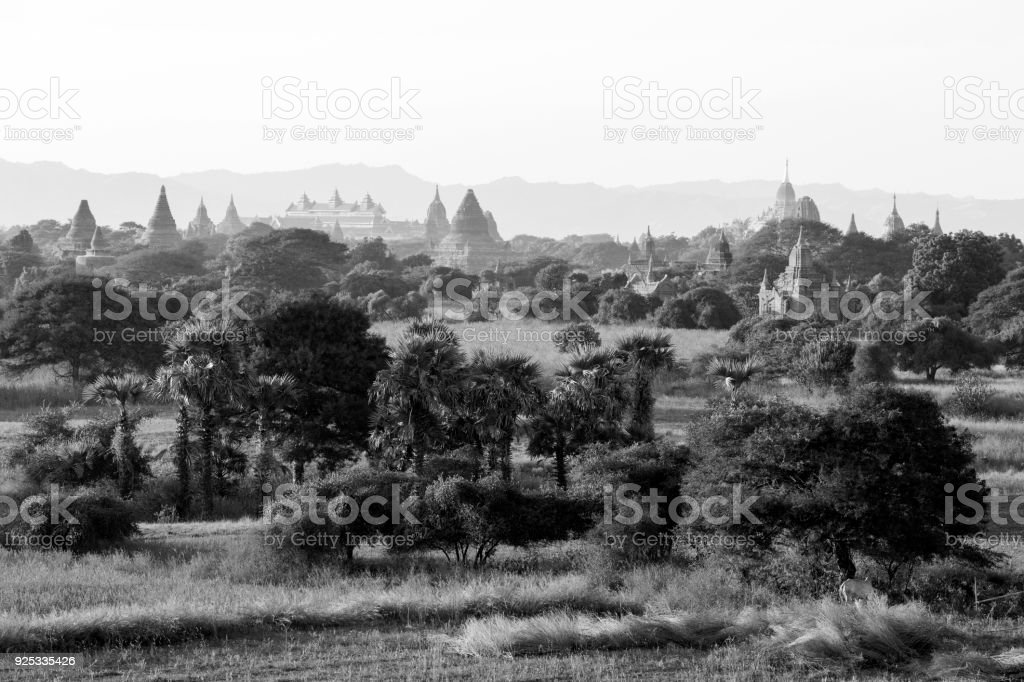 Ancient Temple in the Archaeological Park in Bagan after sunrise, Myanmar stock photo