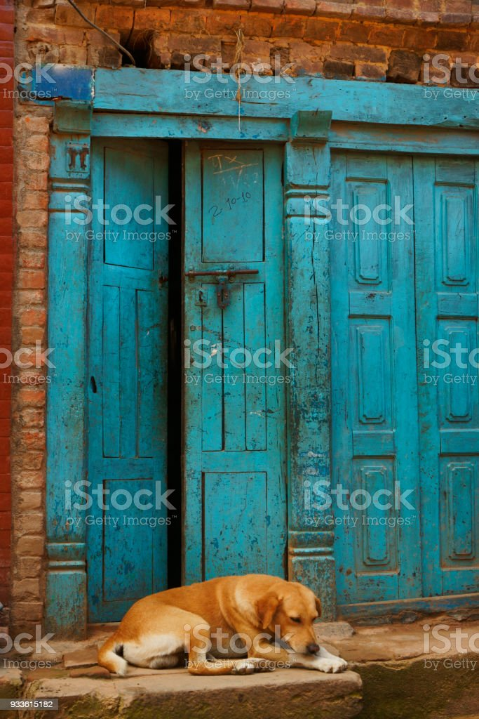 Ancient Weathered Wooden Entrance Door And Sleeping Dog In Bhaktapur