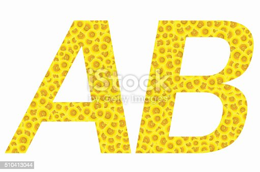 istock B and A Sunflower text on isolated backgrounds 510413044