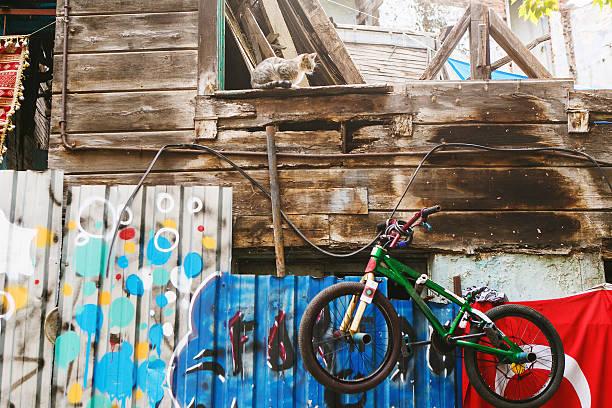 BMX und Katze – Foto