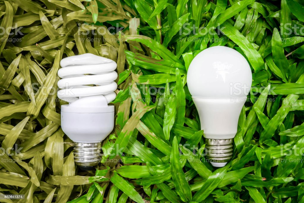 LED and Fluorescent bulb comparing on the green grass and wilt grass for alternative technology concept