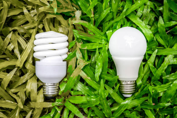 LED and Fluorescent bulb comparing on the green grass and wilt grass for alternative technology concept LED and Fluorescent bulb comparing on the green grass and wilt grass for alternative technology concept canadian football league stock pictures, royalty-free photos & images