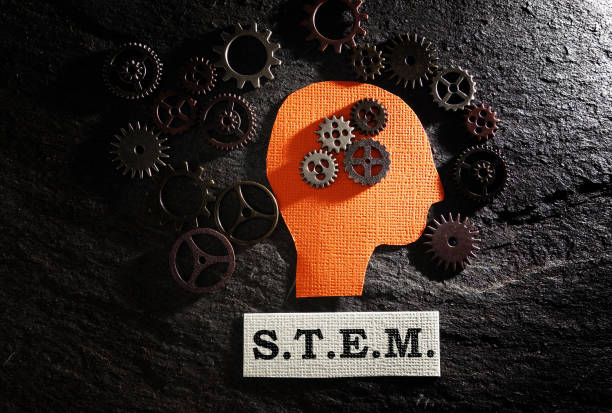 STEM and gears stock photo