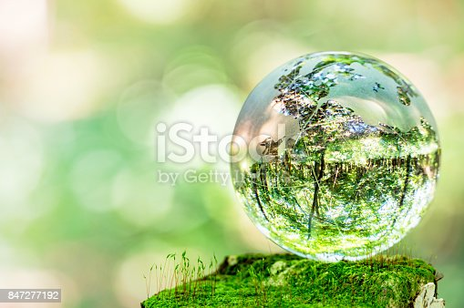 istock MOSS and glass globes 847277192