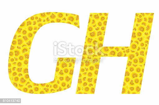 istock G and H sunflower text on isolated backgrounds 510413740