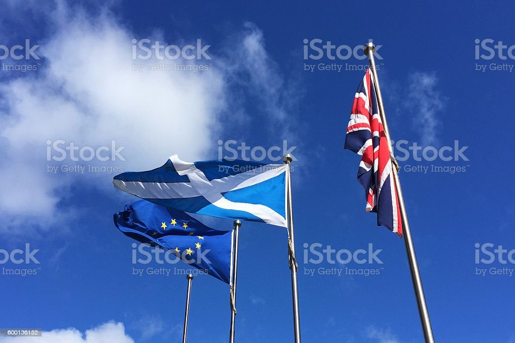 European Union EU and Scotland flags flying and drooping United...