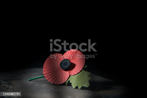 istock And We Will Remember Them NT 1240082731