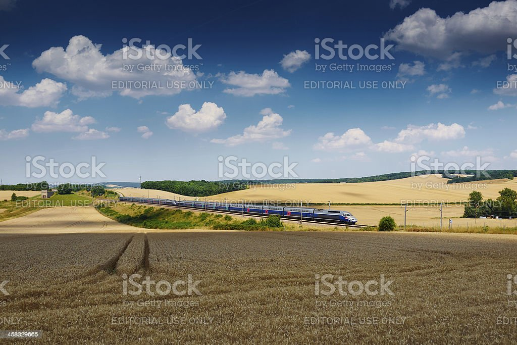 TGV and wheat field stock photo