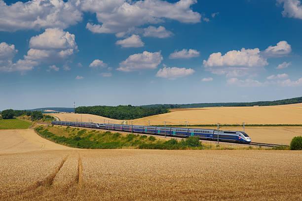 TGV and wheat field stock photo