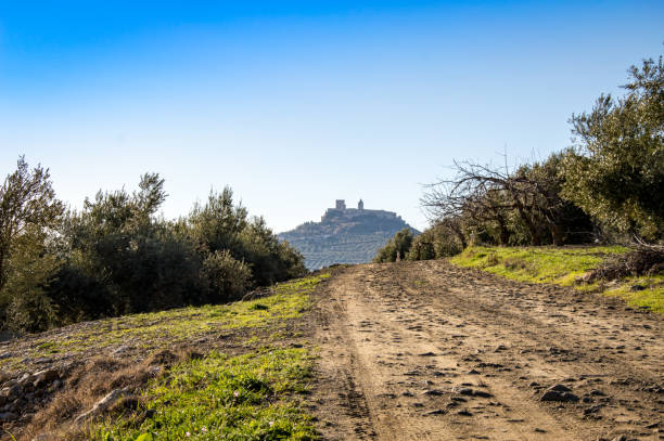 Andalusian landscape with olive trees and a mountain village in the background. Spain on a day in spring stock photo