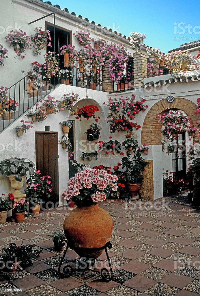 andalusian patio, cordoba royalty-free stock photo