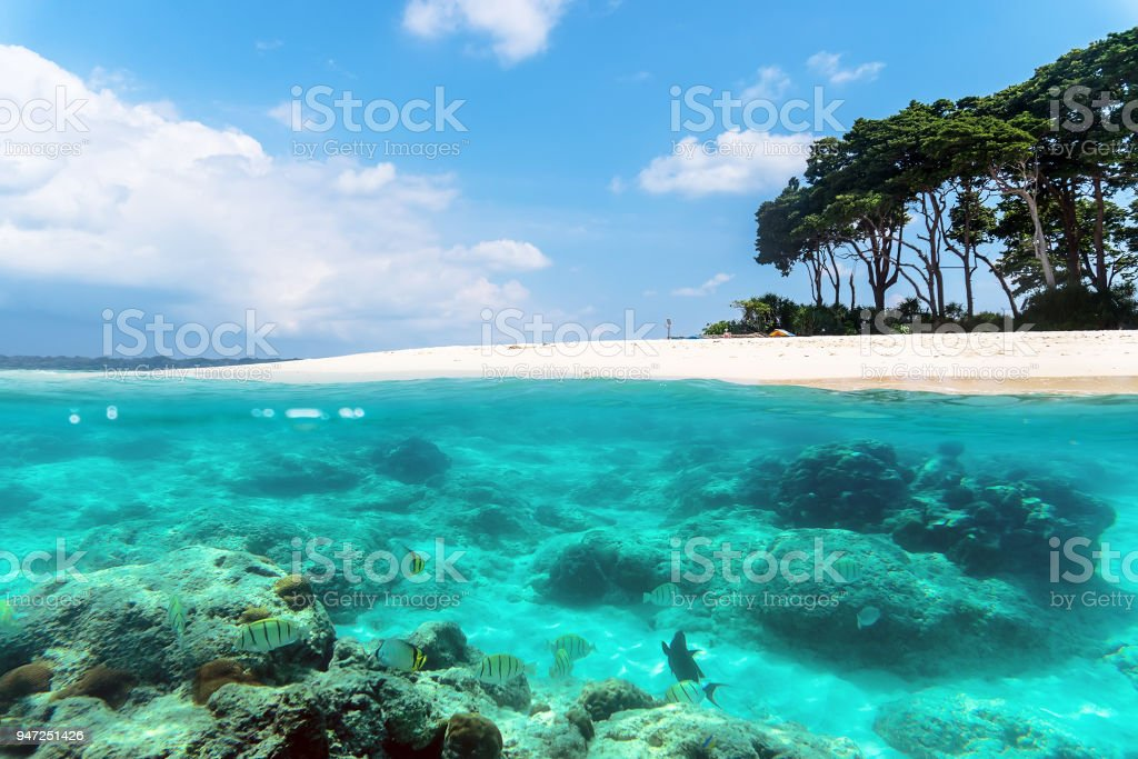 Andaman and Nicobar Islands. The concept of snorkeling and diving stock photo