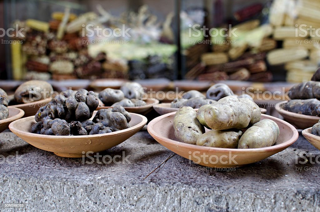 Andean potatoes Andean potatoes Food Stock Photo
