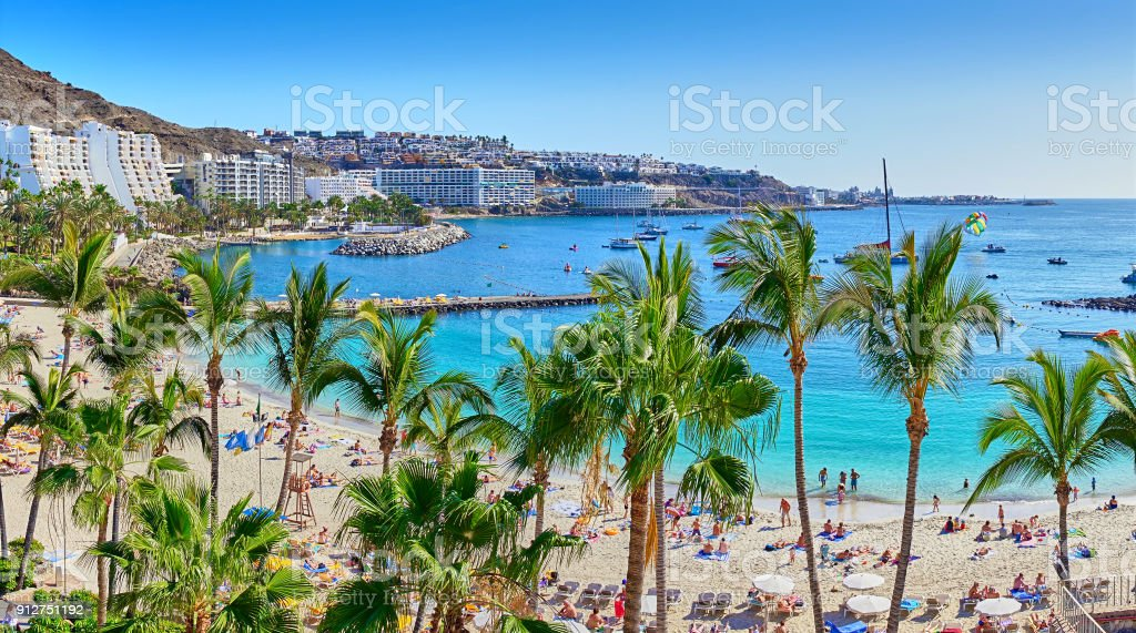 Anfi beach with palm trees stock photo