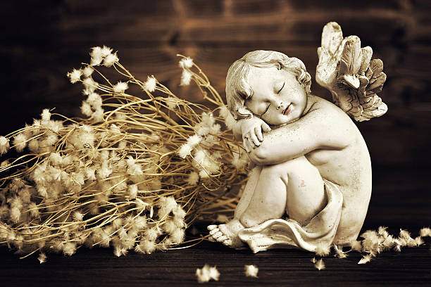 Angel and dry flowers stock photo
