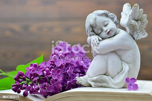 istock Angel and flower 864760012