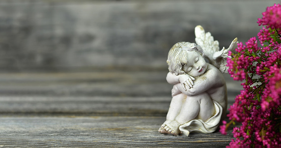 Angel and flowers on wood background