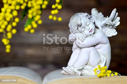 istock Angel and mimosa flower 646954256