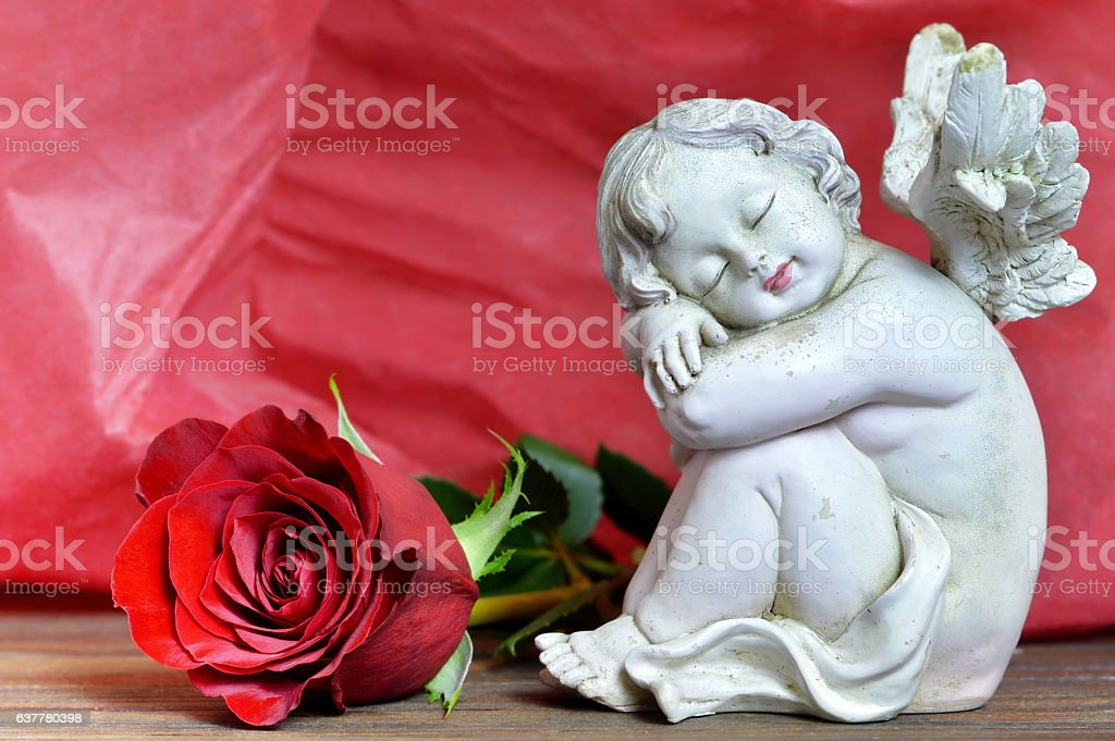 Angel and rose on red background stock photo
