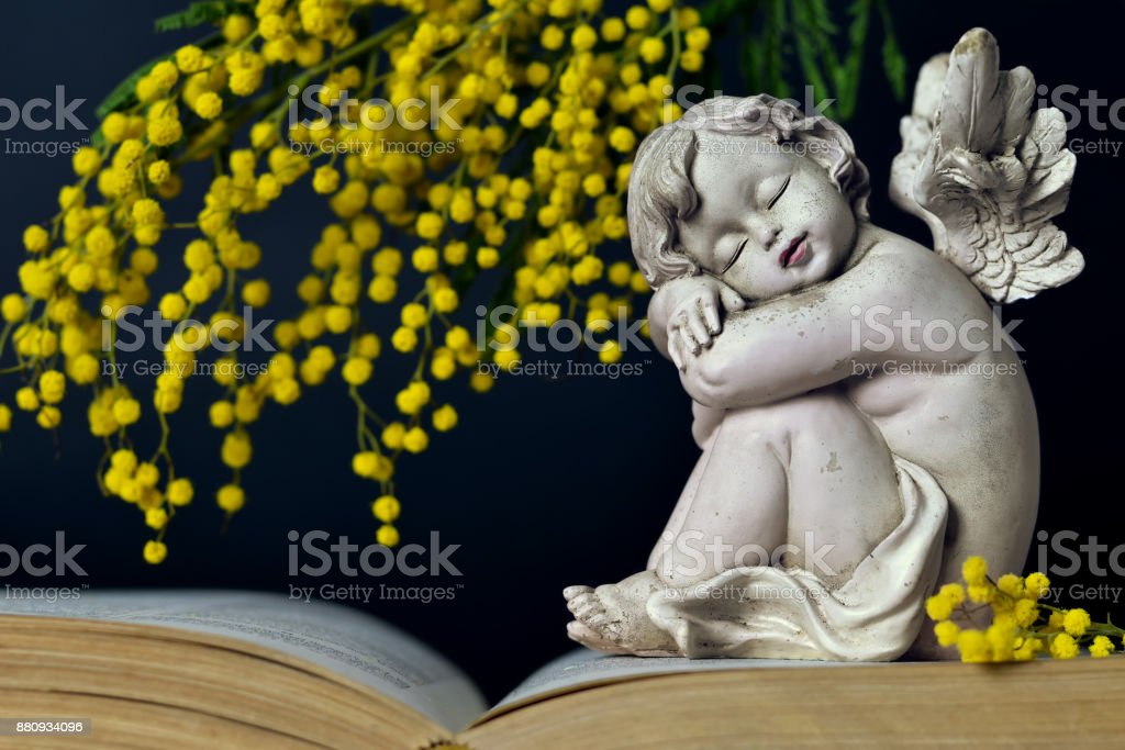 Angel and spring flowers on dark background stock photo