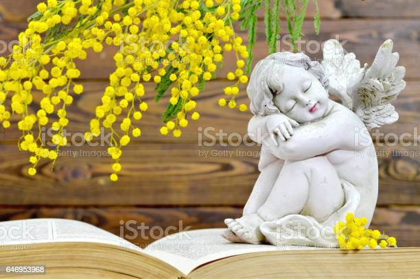 Angel and spring flowers on wooden background picture id646953968?b=1&k=6&m=646953968&s=612x612&h=vusudwsosgg 3i7mkgwj4zhkxilmf bt6xgkirlxp14=