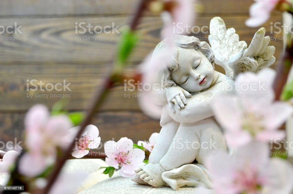Angel and spring flowers stock photo