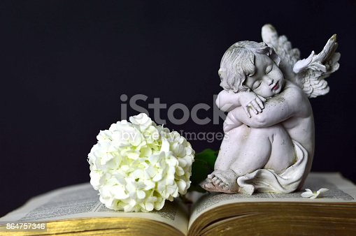 istock Angel and white flower 864757346
