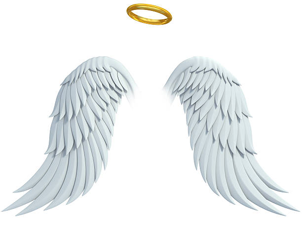 angel design elements - wings and golden halo stock photo