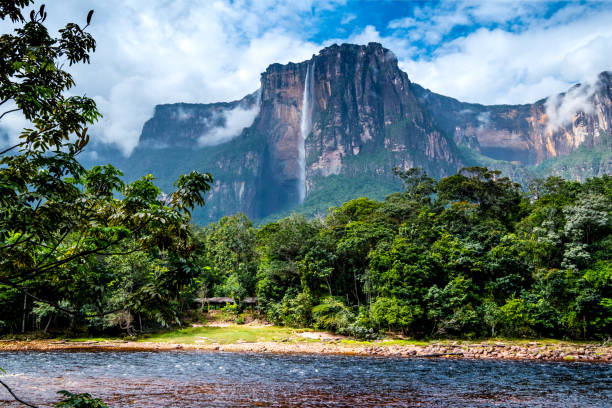 angel falls from the river bank - venezuela stock photos and pictures