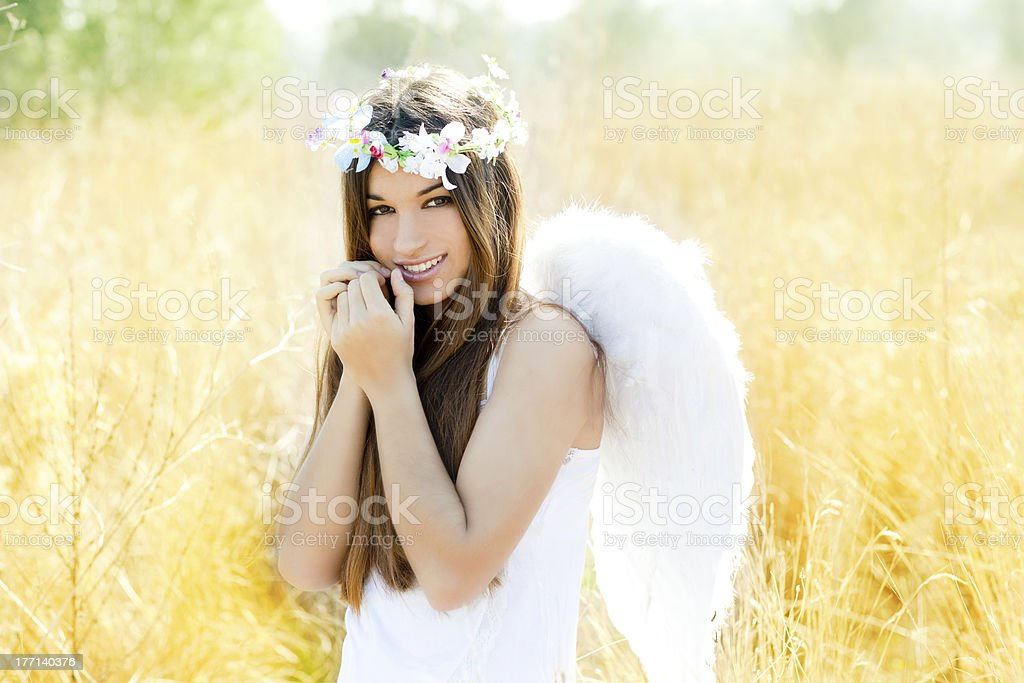 Angel girl in golden field with feather white wings stock photo