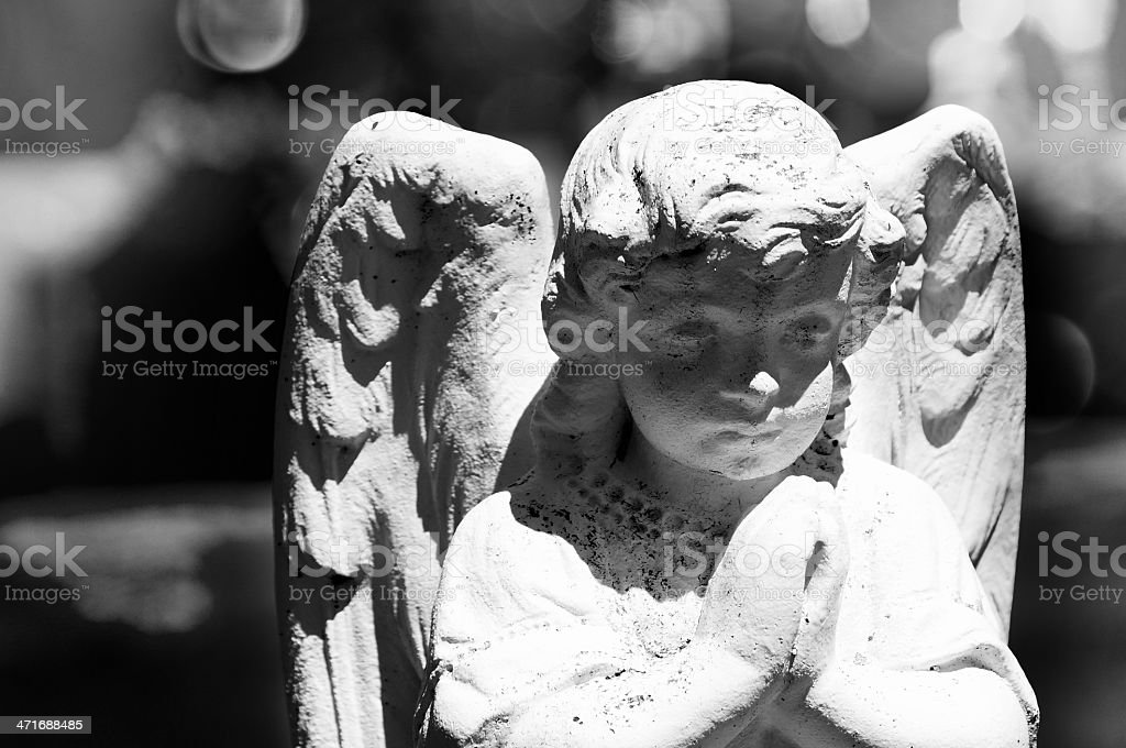 Angel head closeup in cemetery stock photo