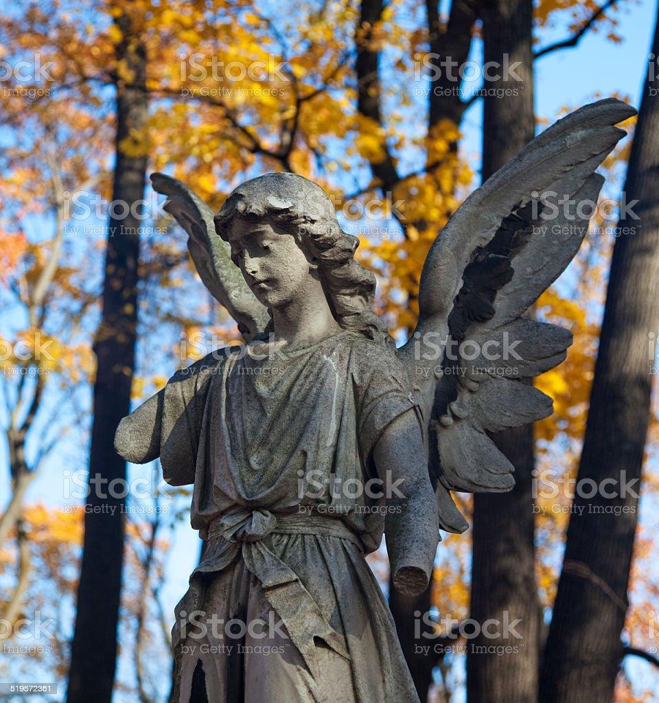 Angel in autumn stock photo