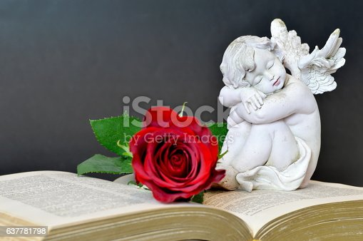 istock Angel, rose and old book on dark background 637781798