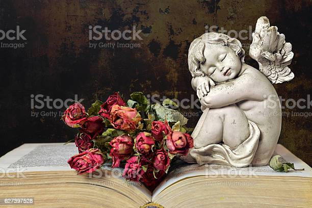 Angel roses and old book on grunge background picture id627397528?b=1&k=6&m=627397528&s=612x612&h=oekyljvqsbrwcvla5olx8ae6m qs6myhjrynrtvjf9w=