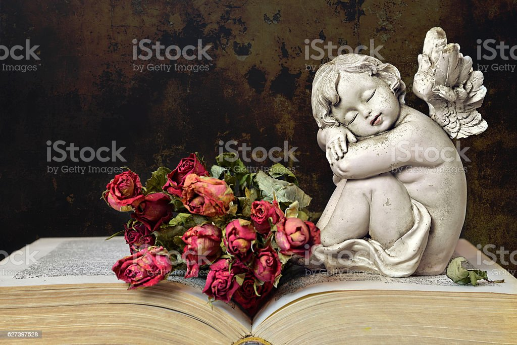 Angel, roses and old book on grunge background stock photo