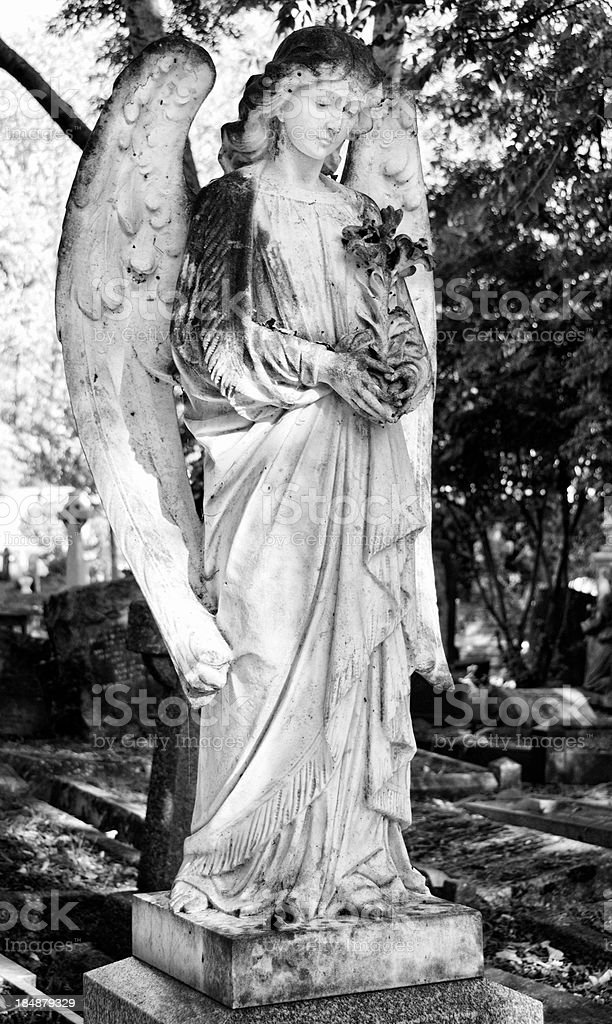 Angel Statue at Old Cemetery royalty-free stock photo